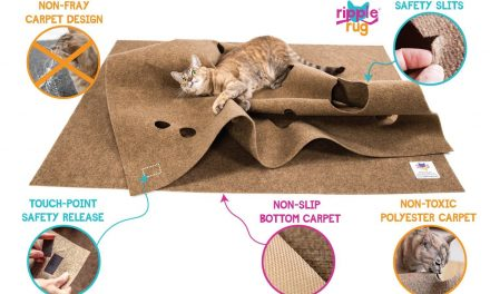 Check Out The Ripple Rug Cat Activity Mat (Video)