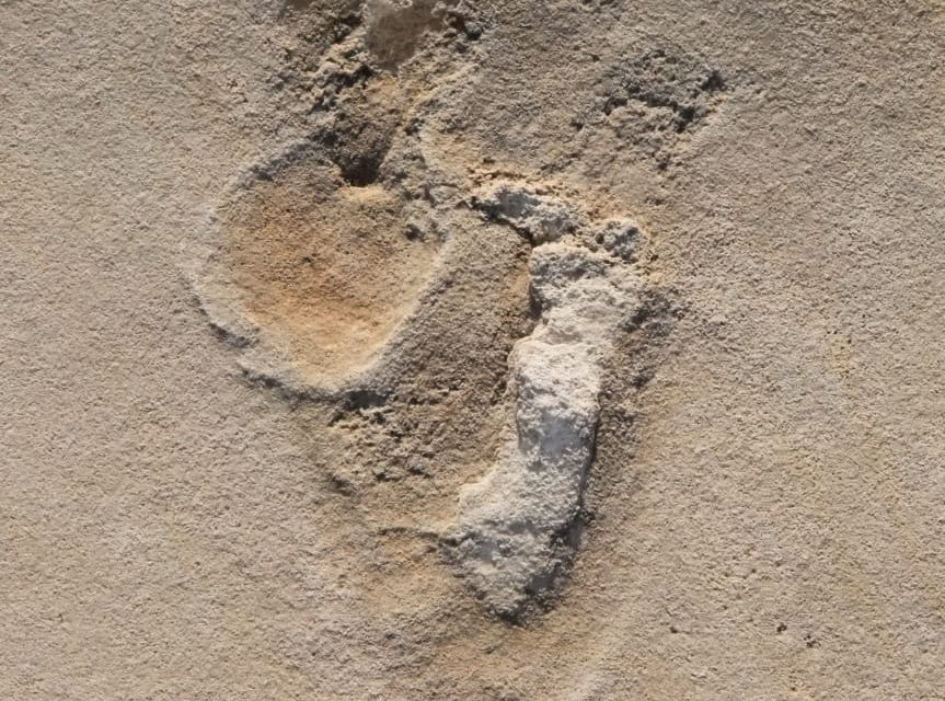 5.7M Year Old Footprint Discovery of Human-Like Creatures in Crete Complicate Evolution Narrative